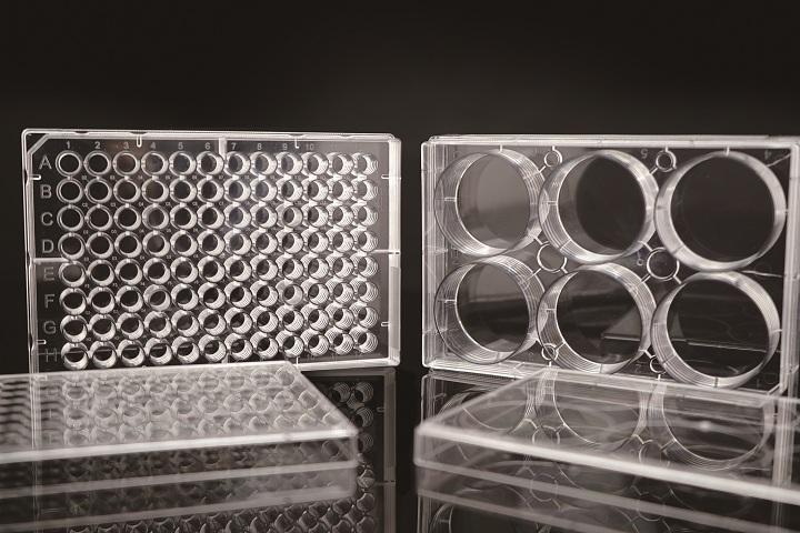 Edge細胞培養板